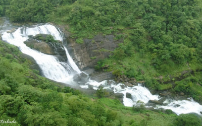 Forget the usual tourist circuit for this offbeat experience in Coorg